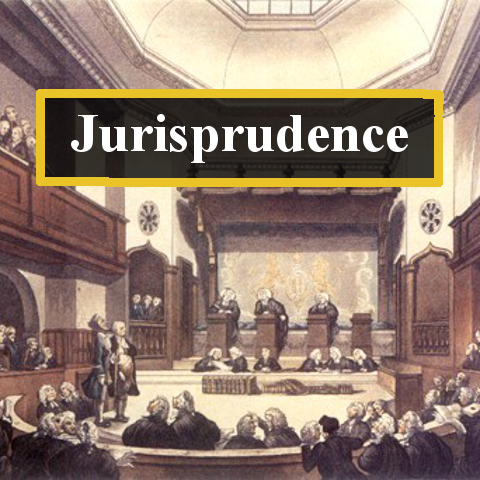 Matrix of jurisprudence